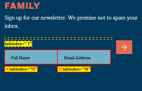 screenshot of the newsletter signup form showing the two fields have positive tabindex values.
